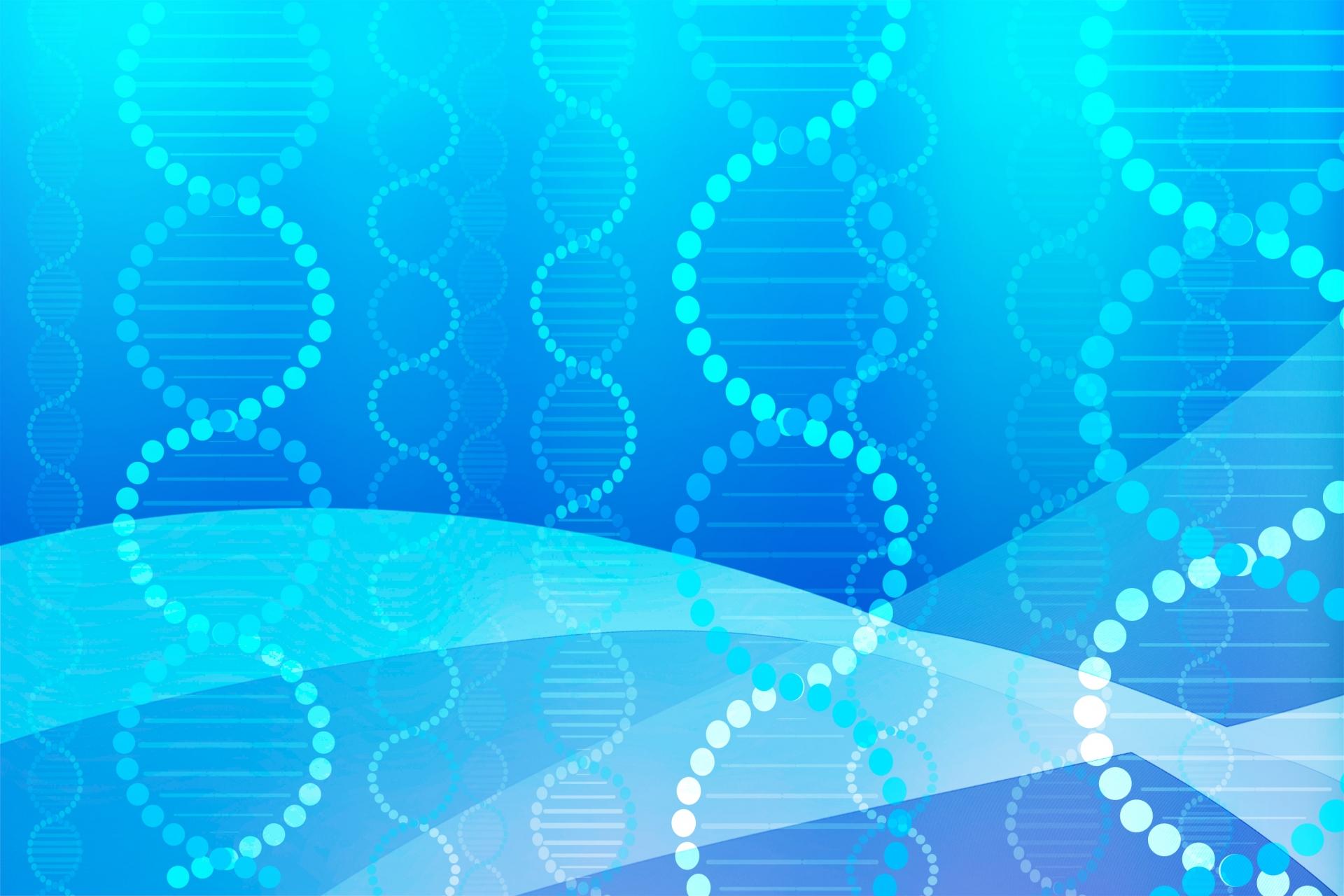 メガベンチャーのDNA